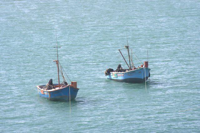 Paracas-BarcosPescadores
