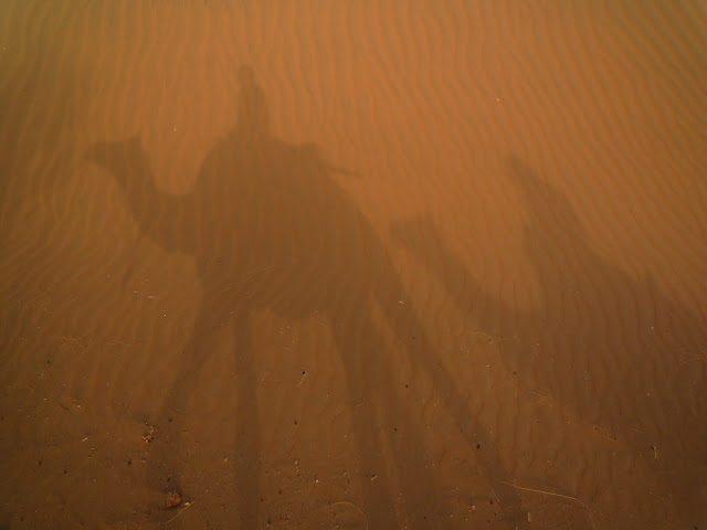 Jaisalmer-Desierto Thar Dromeraios Arena
