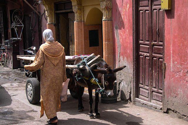 Marruecos-Medina Carro Burro