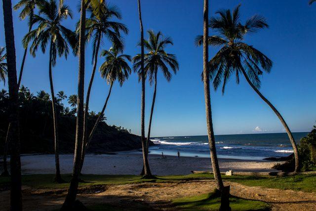 Itacare Playa Costa Palmeras