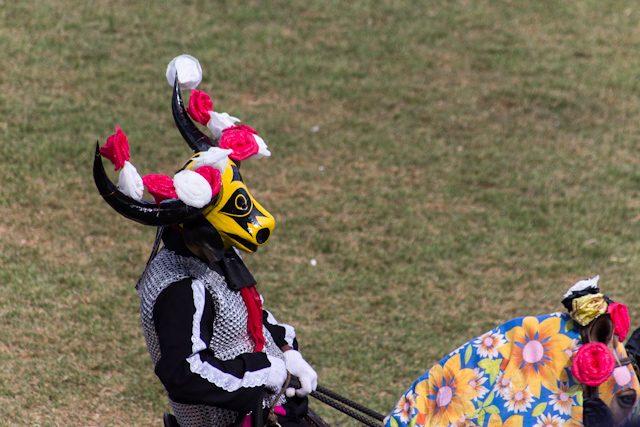 Pirenopolis Mascarado Flores
