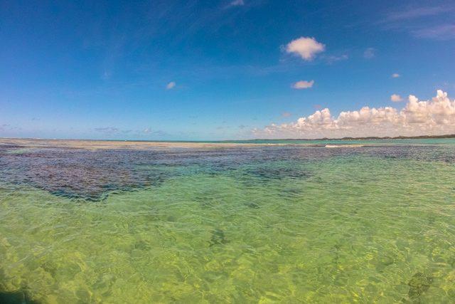 Maragogi Barrera Coral Superficie