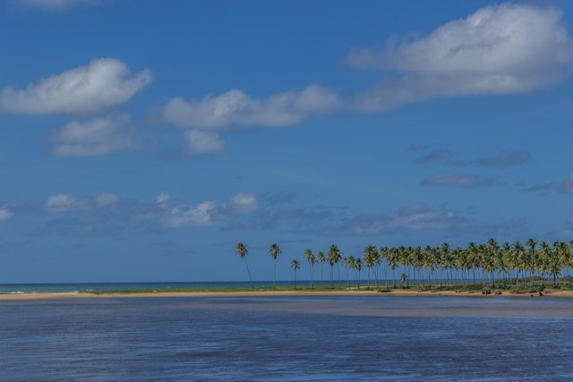Salvador Playas Arembepe