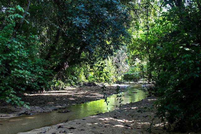 Colombia Parque Tayrona Camino Pueblito