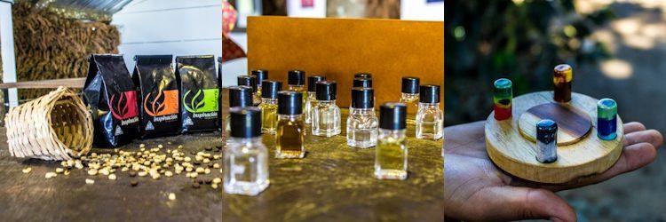 Combia Inpiracion Variedades Aromas Estaciones