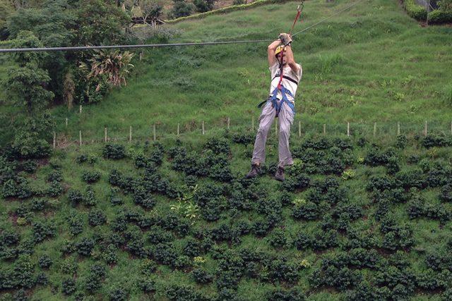 Valle Del Cauca Bosques Del Saman Tirolina Cafetales