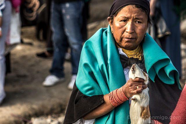 Otavalo Feria Ganado Cuy