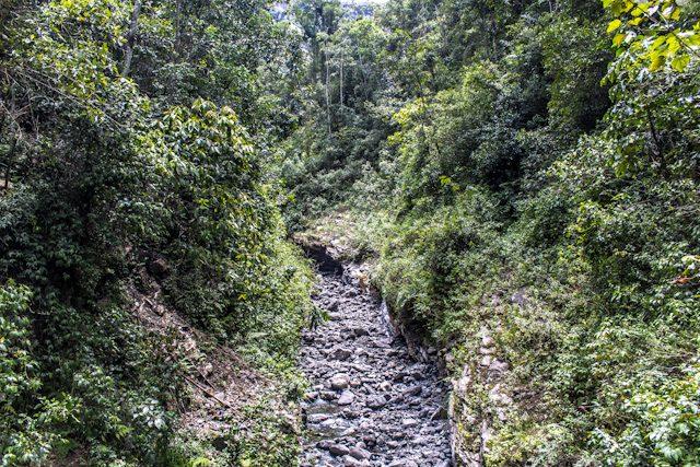 Chachapoyas Catarata Gocta Camino