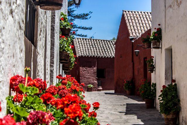 Arequipa Monasterio Santa Catalina Flores Contraste Colores