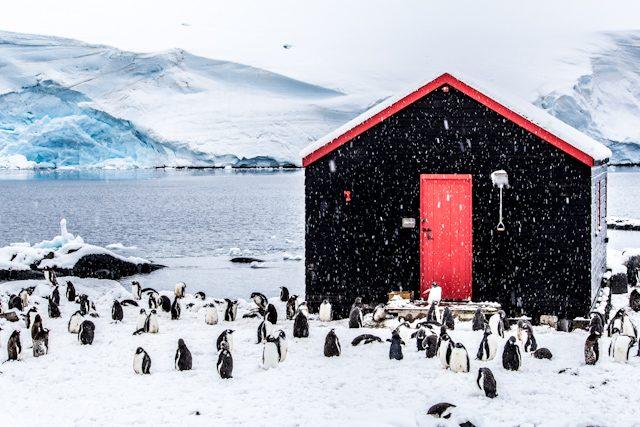Antartida Museo Port Lockroy