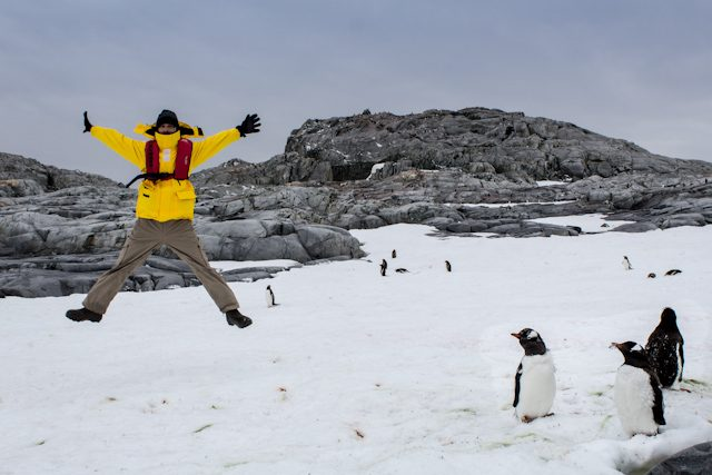 Antartida Salto Pinguinos