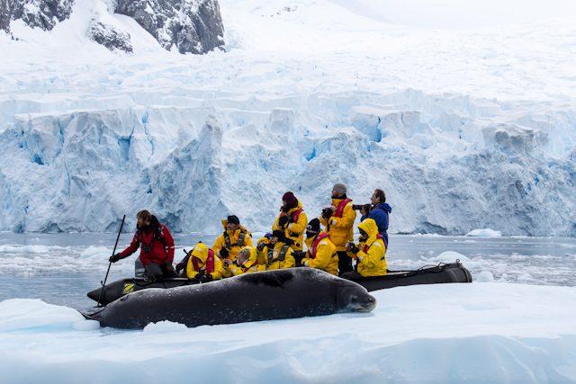 Antartida Zodiac Foca Leopardo Glaciar