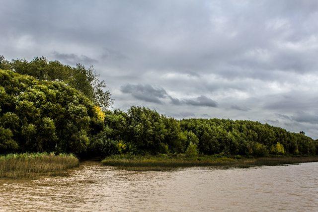 Argentina Buenos Aires Rio San Antonio Delta Parana Orilla