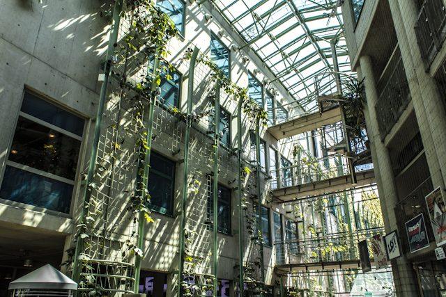 PoloniaVarsovia Biblioteca Universitaria Interior