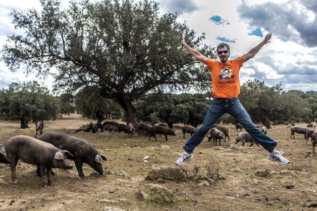 Tajo Internacional Piara Cerdo Iberico Pata Negra Salto