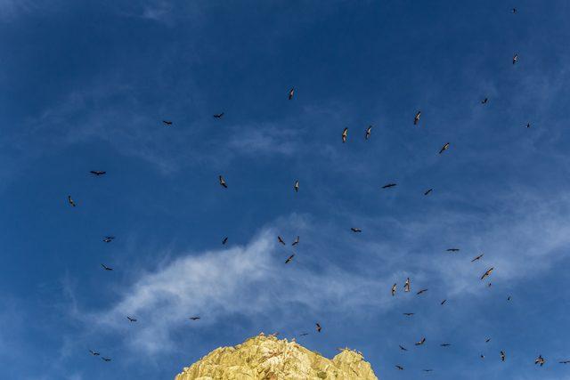 Extremadura Parque Nacional Monfrague Cielo