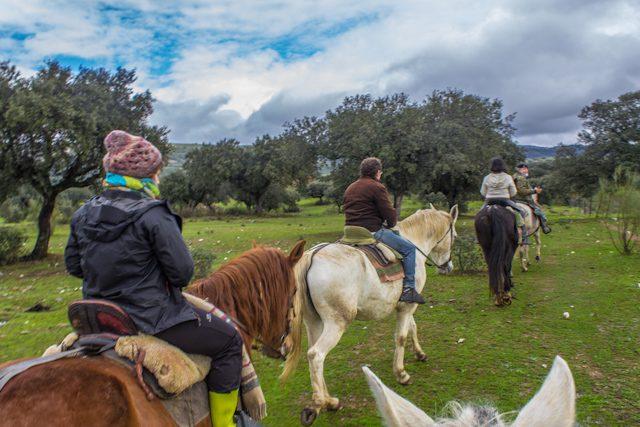 Extremadura Dehesa Paseo Caballo