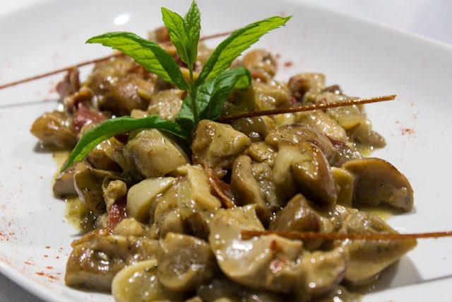 Extremadura Monfrague Gastronomia Boletus