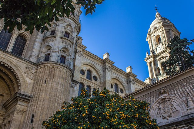 Malaga Catedral Manquita Naranjos
