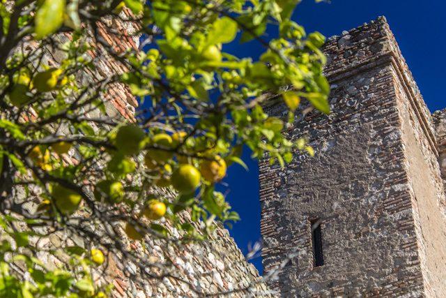 Que visitar en Malaga Muros Alcazaba Naranjos