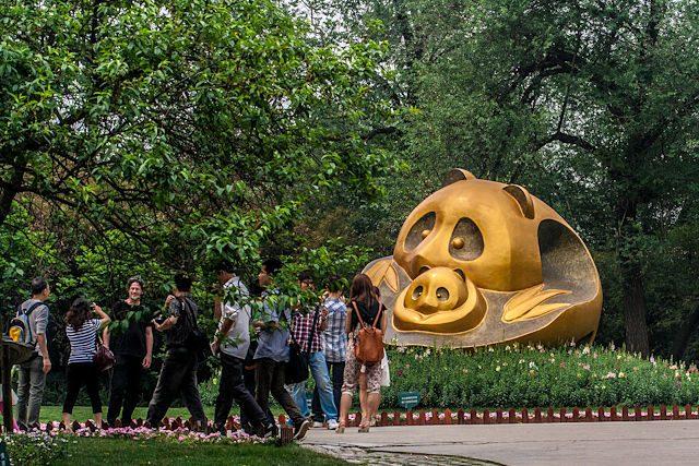 China Chengdu Centro Osos Panda