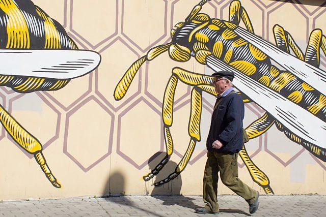 Roma Quadraro Graffiti MURo vecino
