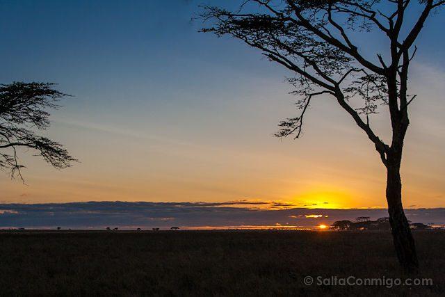 Tanzania Serengueti Amanecer