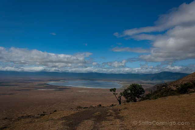 Tanzania Serengueti Llanura Paisaje
