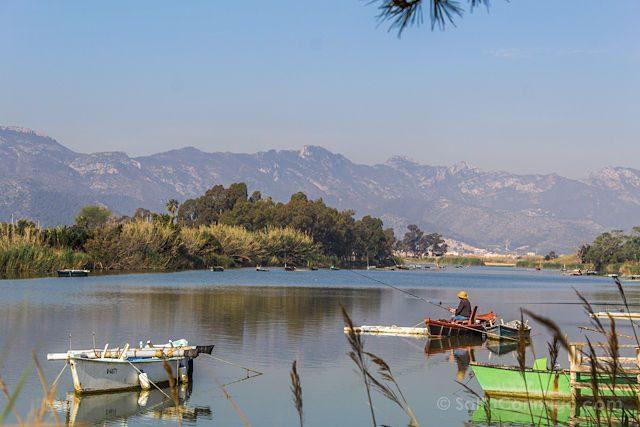 Valencia Cullera Estany Pesca
