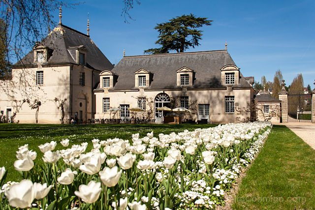 Francia Valle Loira D'Azayle-Rideau
