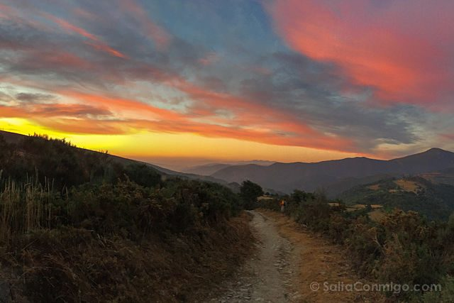 CaminoTrip Camino Amanecer