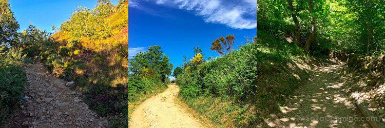CaminoTrip Camino Mosaico