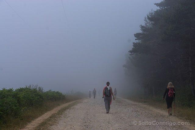 CaminoTrip Camino Niebla