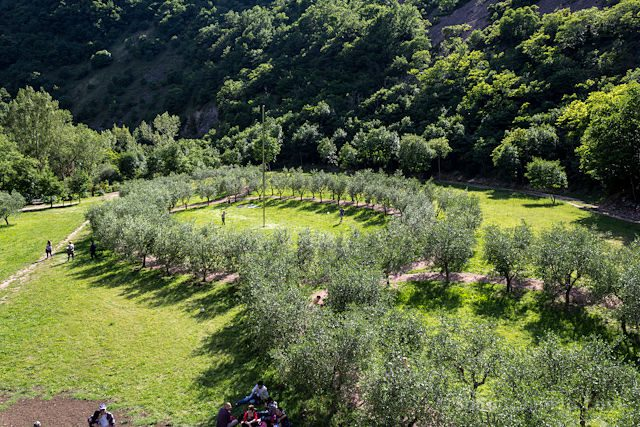 Italia Umbria Assissi Bosque San Francisco Terzo Paradiso