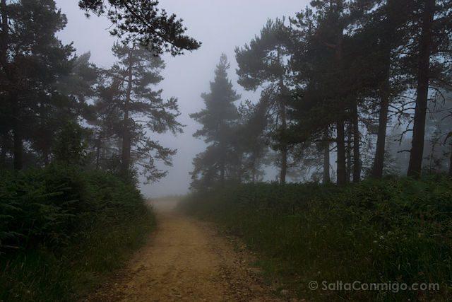 Postales Camino de Santiago Niebla