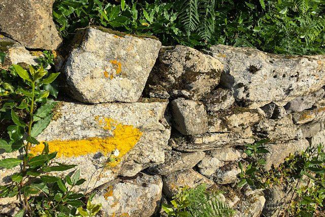 Postales Camino de Santiago Flecha Amarilla