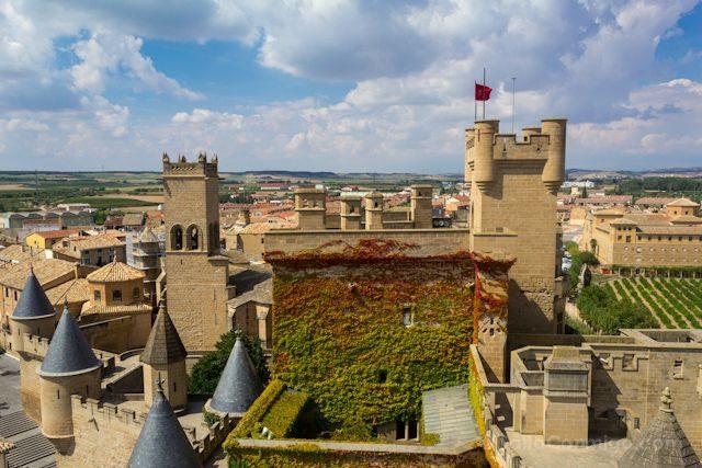 Navarra Castillo Olite Torre