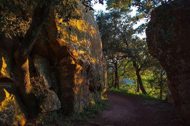Tarragona Baix Camp Castillo Escornalbou Monasterio Senderos