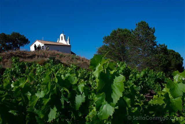 Francia Costa Bermeja Ermita Banyuls