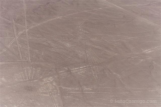Peru Lineas Nazca Condor