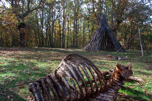 Burgos Paleolitico Vivo Poblado Osamenta Bisonte
