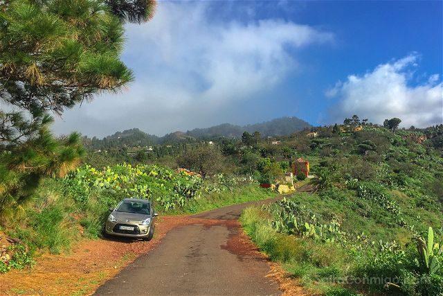 Coche Alquiler La Palma Camino