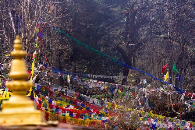 Butan Dochula Banderas Oracion