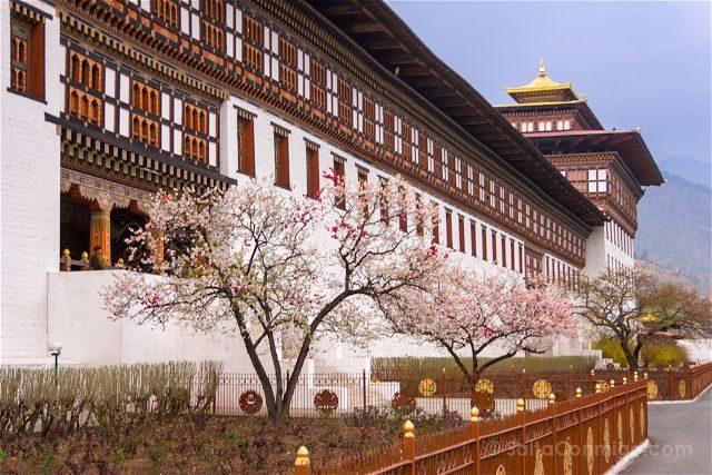 Butan Thimphu Tashichho Dzong