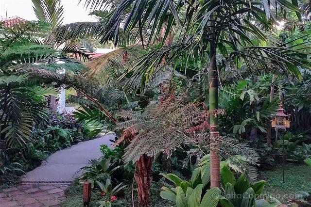 Canarias La Palma Tazacorte Hotel Hacienda Abajo Jardin