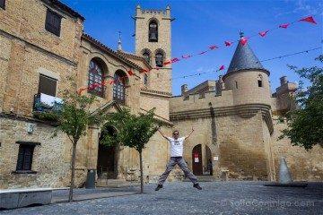 Navarra Olite Palacio Real Salto