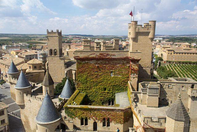 Navarra Olite Palacio Real Vista Arriba