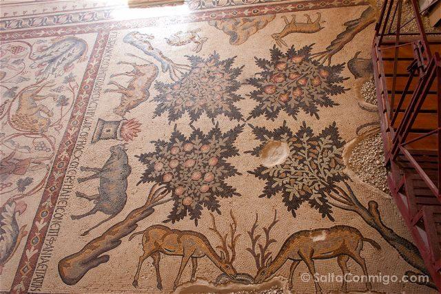 Jordania Madaba Iglesia Lot Procopio Mosaico Ciervos