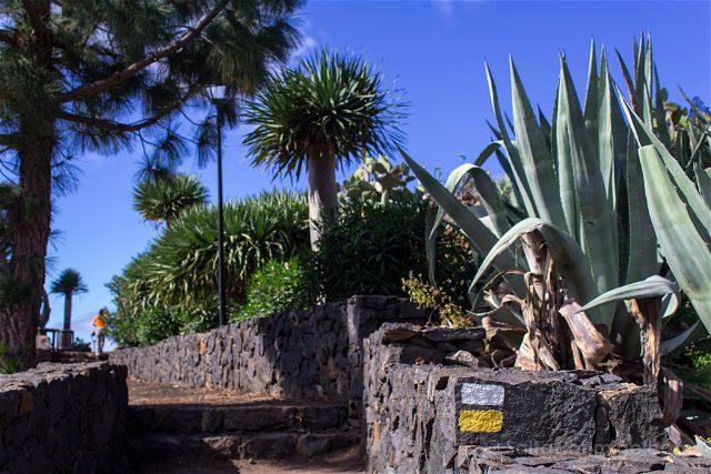 La Palma Ruta Senderismo Trekking PR