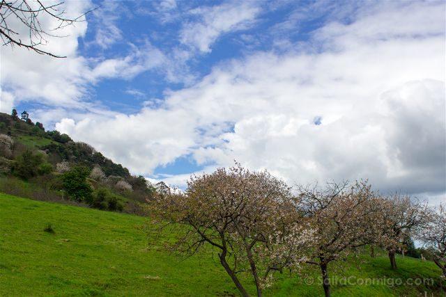 Asturias Gijon Paseo Manzanos